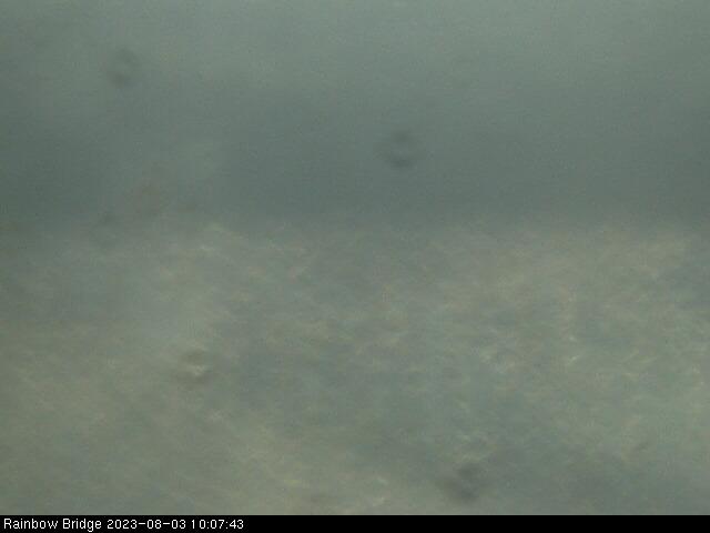 Niagara Falls Rainbow Bridge Live Webcam