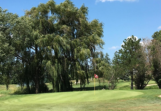 Greens at Brock Golf Course
