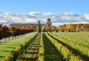 Niagara Falls Wineries - Two Sisters