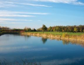 Rio Vista Golf Course - Niagara Falls Golf