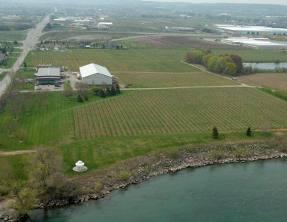 Niagara Winery - Legends Estate
