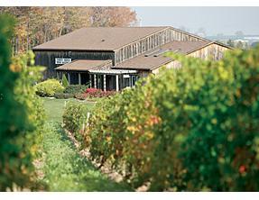 Niagara Winery - Thirty Bench