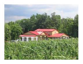 Niagara Winery - Kacaba